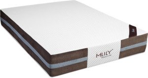 mlily-fusion