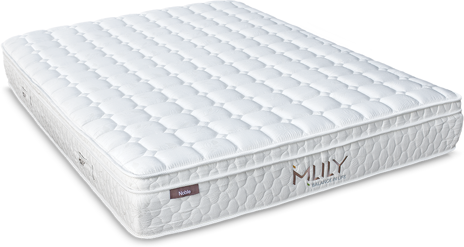 Mlily Noble The Futon Store And Mattress Center